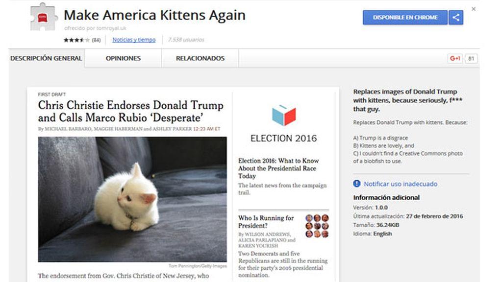 Una extensión de Google convierte las fotos de Trump en adorables gatitos