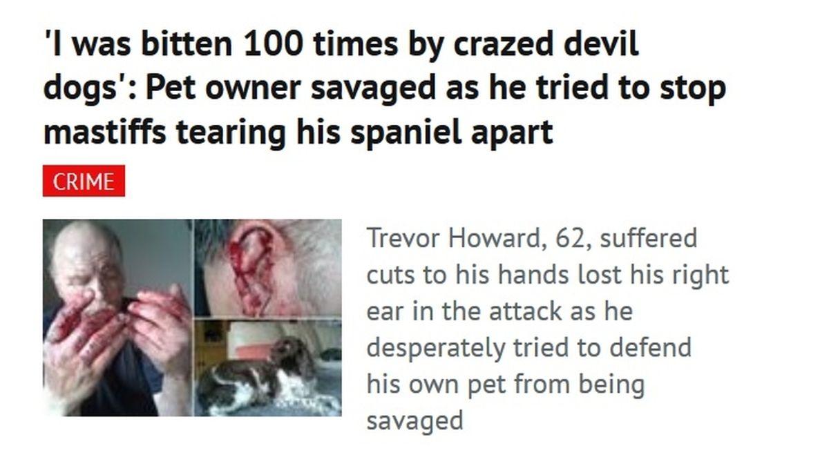 Atacado por tres perros