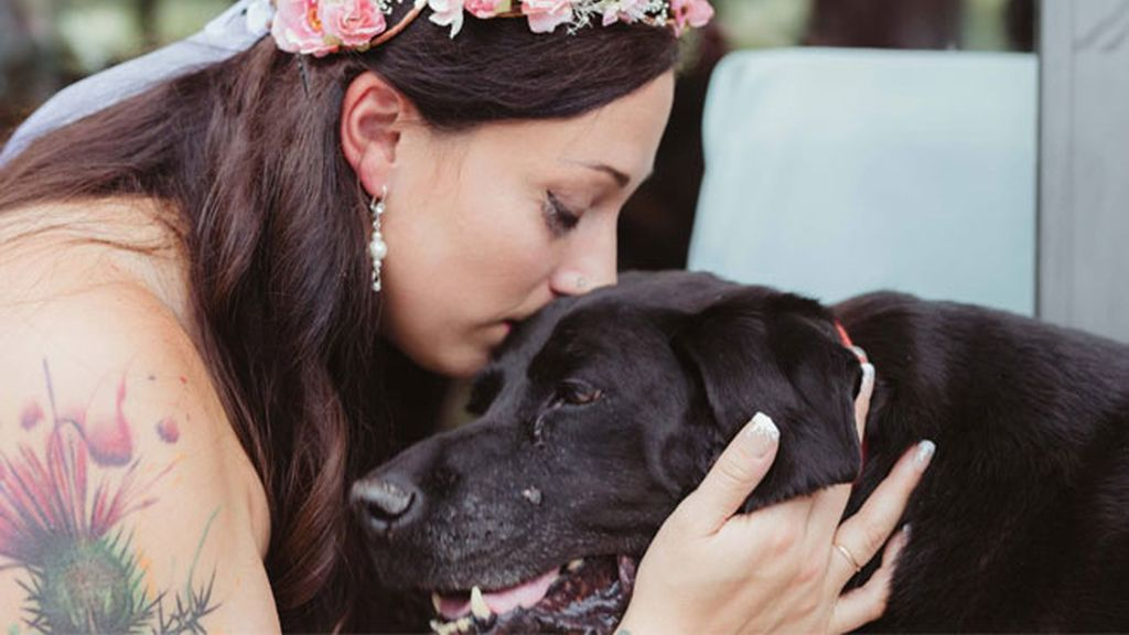 Un perro con tumor cerebral muere después de asistir a la boda de su dueña