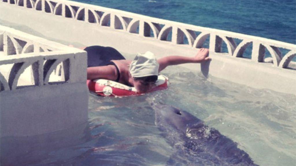 La mujer que hablaba con los delfines