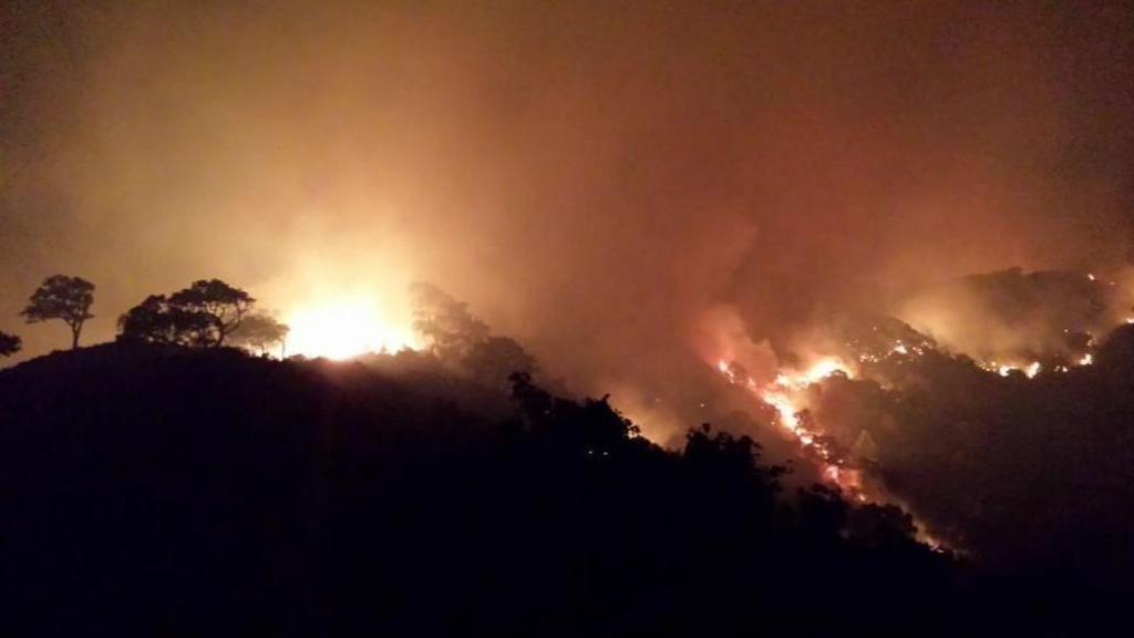 Los bomberos luchan contra las llamas en Algeciras