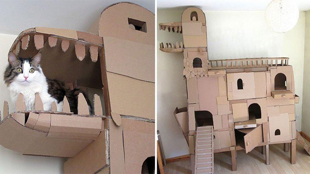 La envidia del reino animal: Un gato con su propio castillo