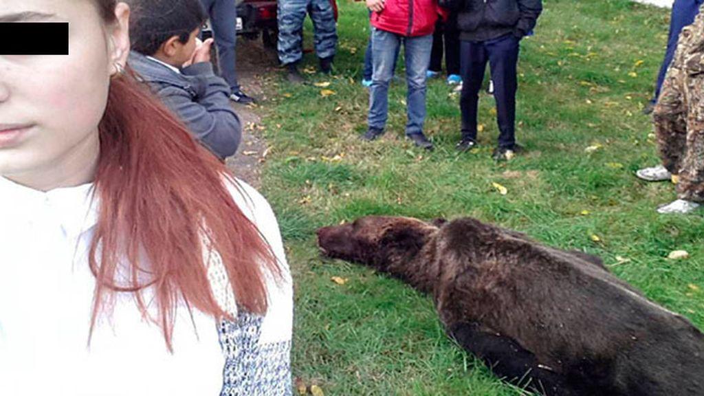 Directora de una escuela permite a sus alumnos acercarse al cadáver de un oso