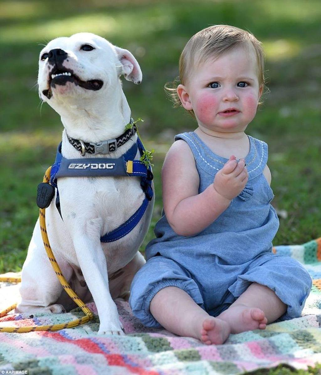 Esta niña encuentra a su alma gemela en un perro de tres patas