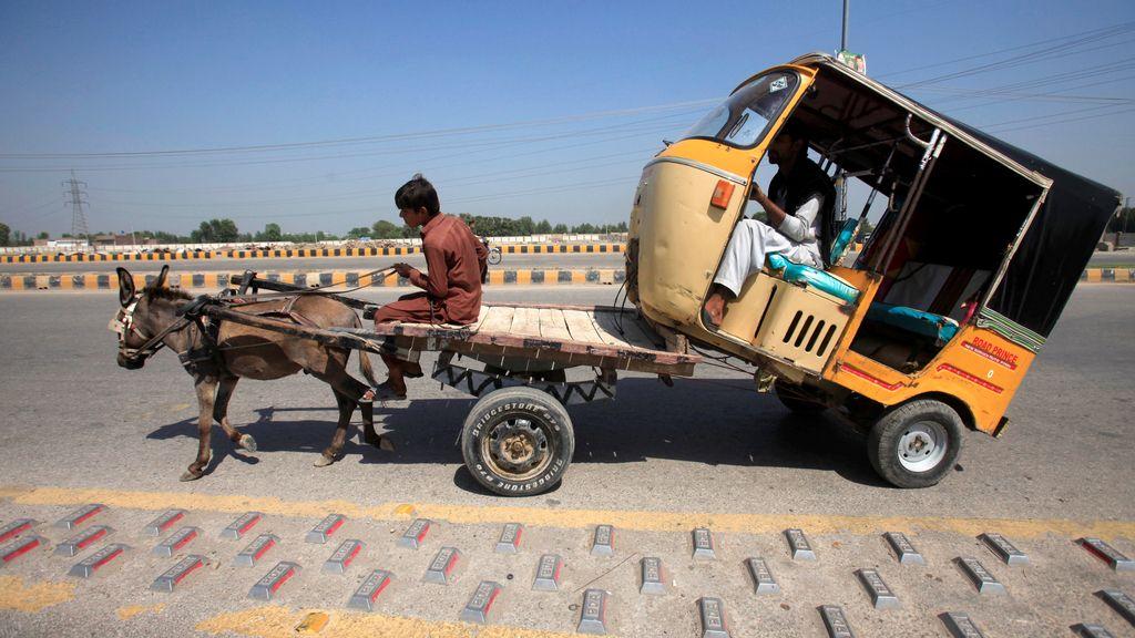 En Pakistán, el asno remolca cualquier vehículo