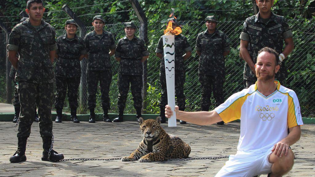 Matan a tiros en Brasil al jaguar 'olímpico'