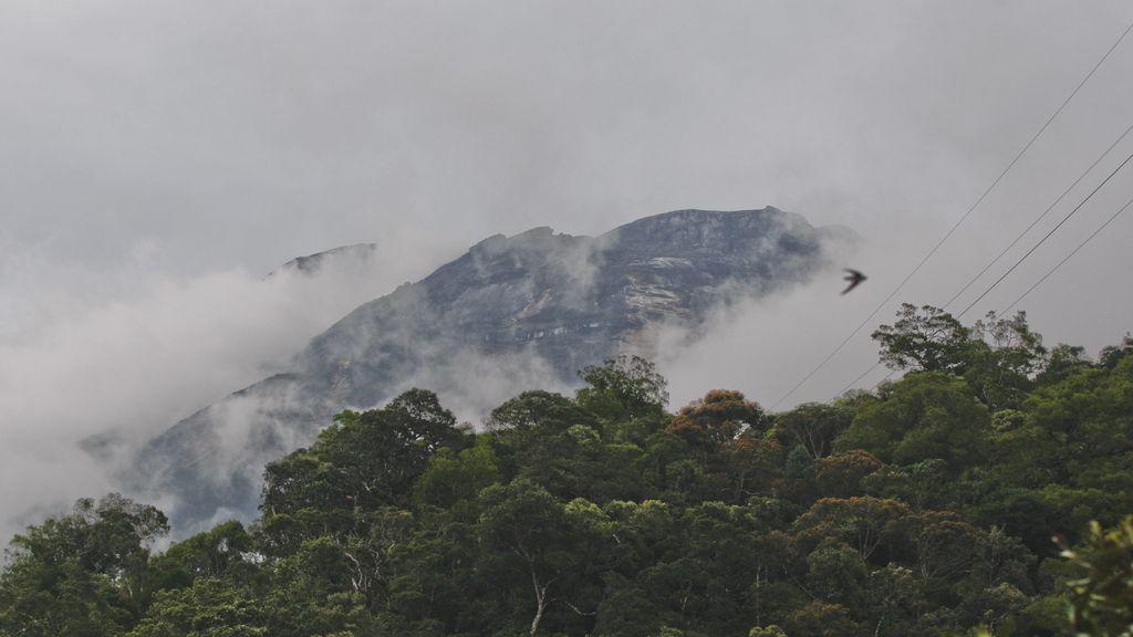 Aumentan a once los muertos tras el terremoto en una montaña de Malasia