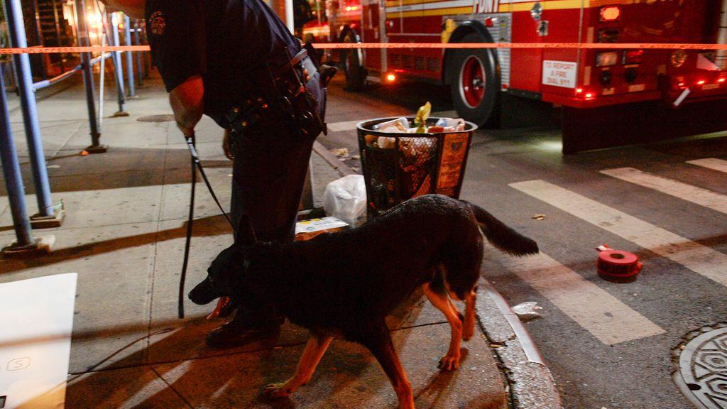 Perros detectan otro explosivo