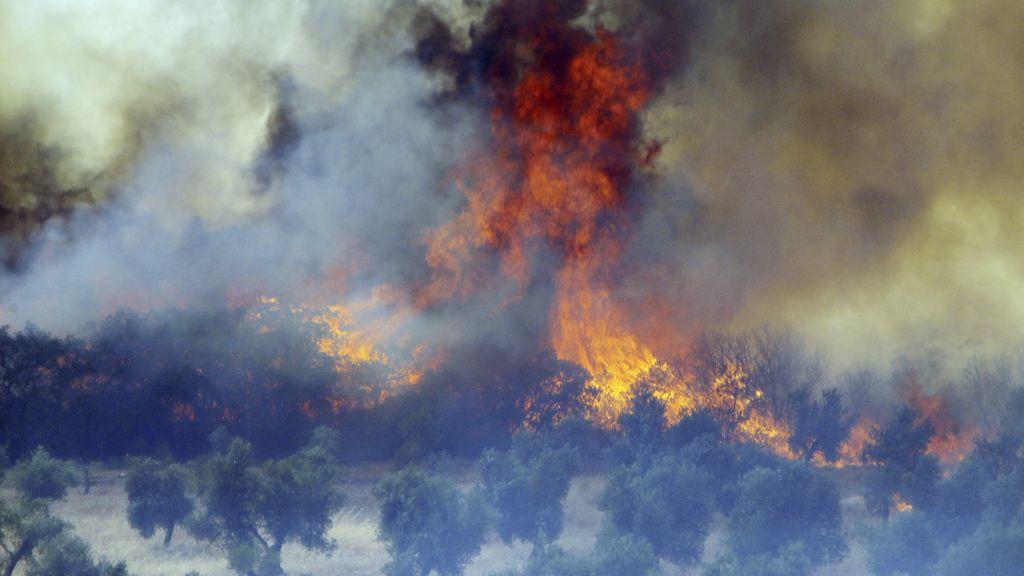 Incendio en Piedrabuena (Ciudad Real)