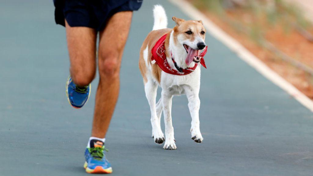 Participa con su perro en un triatlón (23/09/2016)