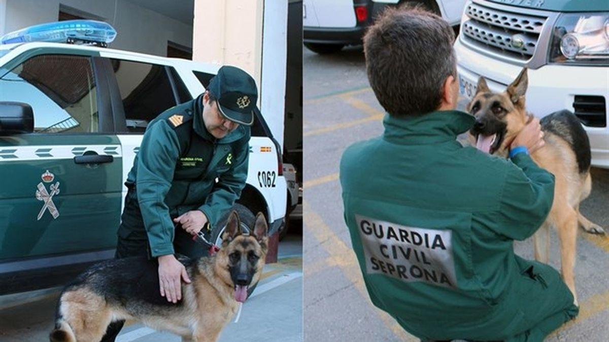 Guardias civiles rescatan a una mujer semiinconsciente en su casa al tratar de devolverle su perro