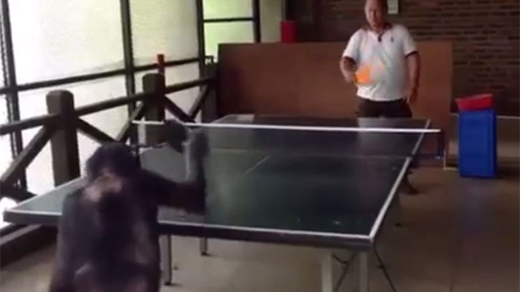 Mono ping-pong
