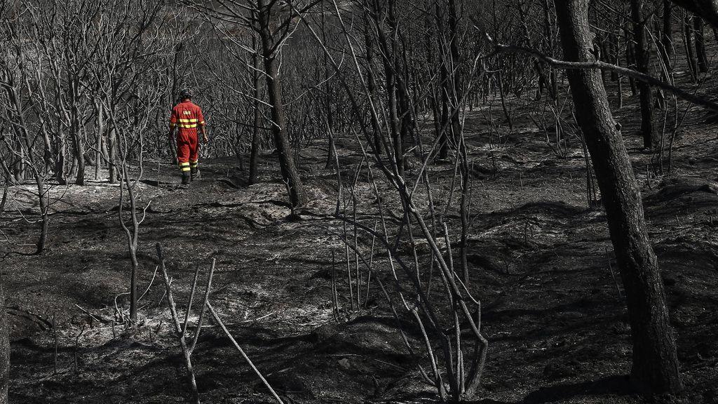 Incendio de Tafalla