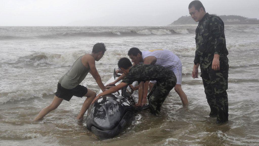 Aumentan a 16 los fallecidos por el supertifón 'Rammasun' en el sur de China