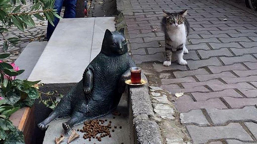 Estatua construida en honor a Tombili, el gato que revolucionó internet