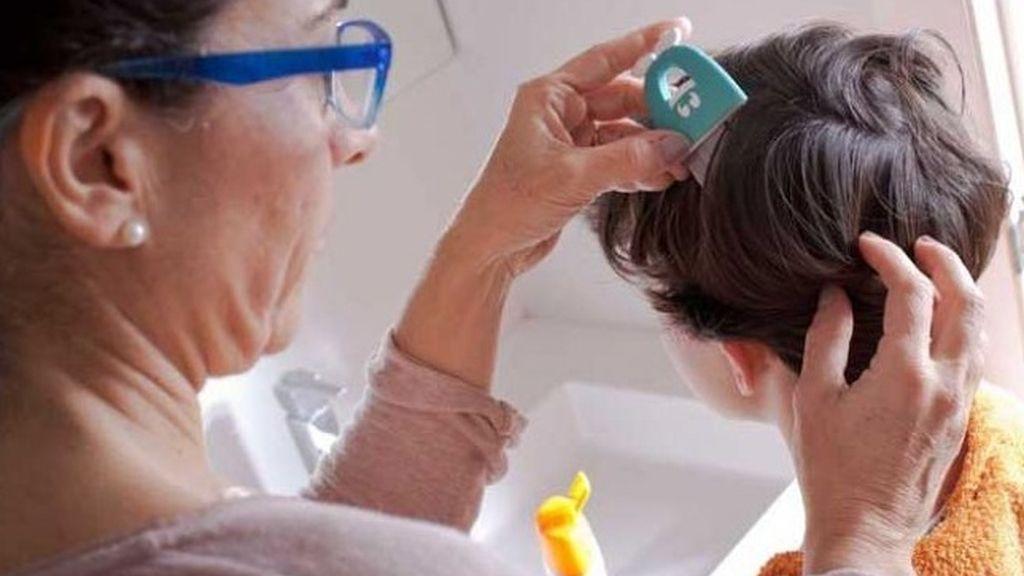 Cinco remedios infalibles para acabar con los temibles piojos de tus hijos