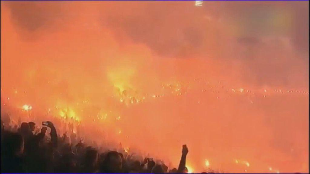 bengalas en Belgrado