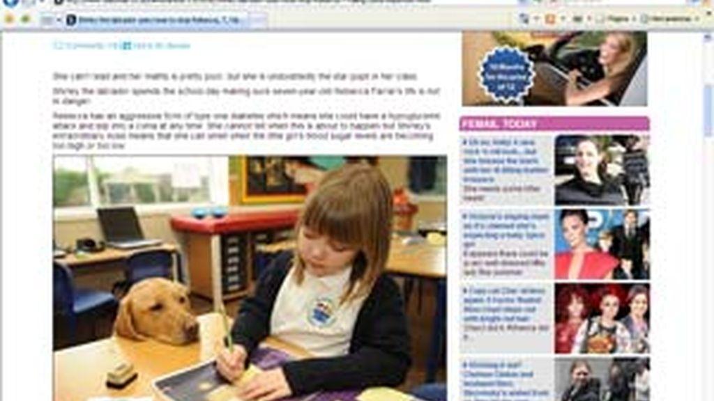 Rebecca Farrar y su perra labrador Shirley, van juntas a la escuela todos los días. FOTO: Daily Mail