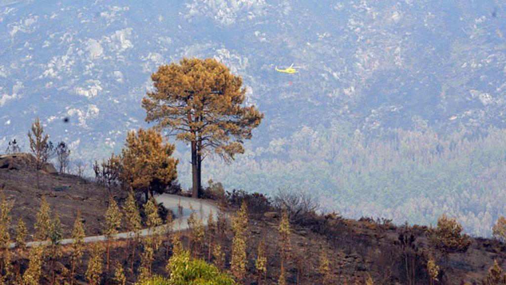 Un incendio activo, dos estabilizados y 10 controlados, nuevo balance en Galicia