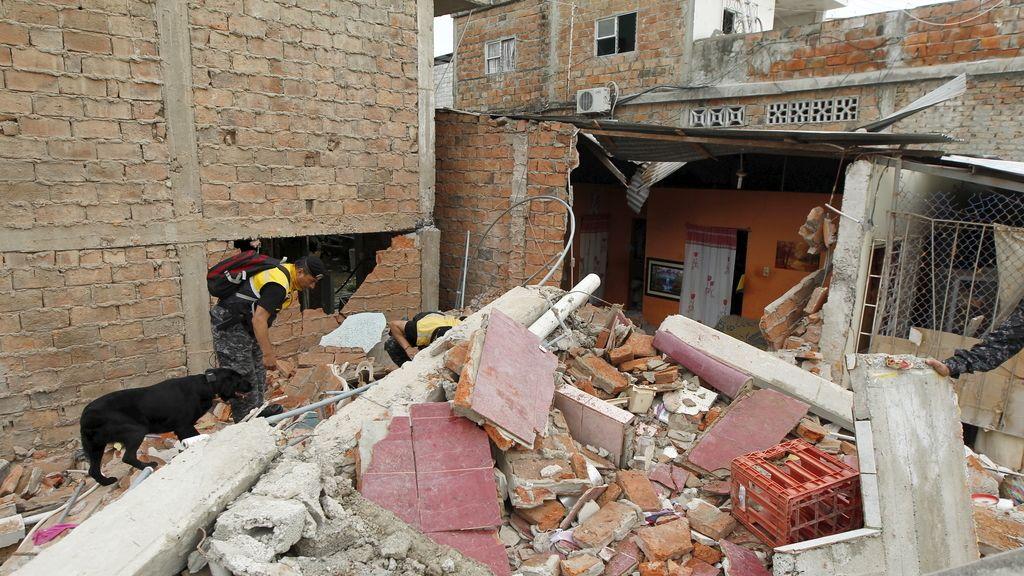 El terremoto de Ecuador en imágenes