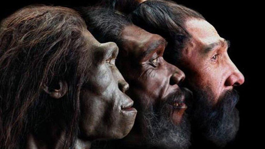 Descubren cuándo apareció el rostro humano