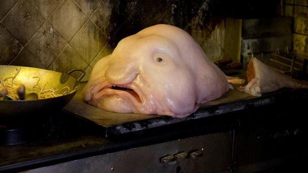 Las criaturas más terroríficas del océano