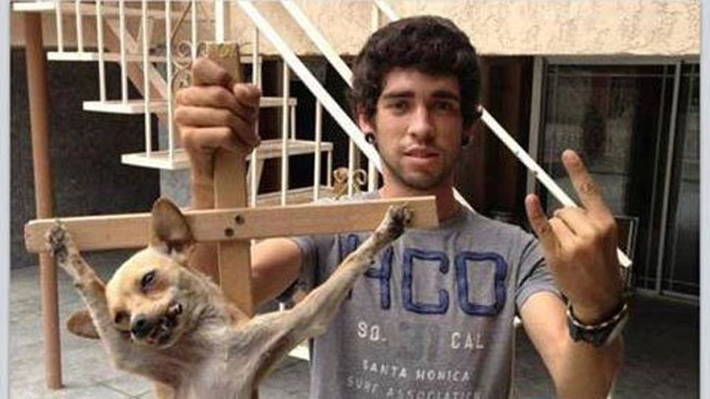 Cuelga una foto de un perro crucificado