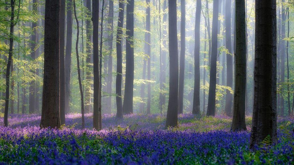 10 paisajes espectaculares para no perderse