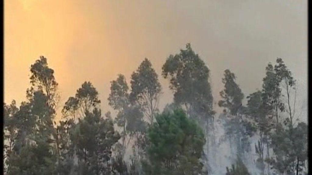 Galicia, pasto de las llamas