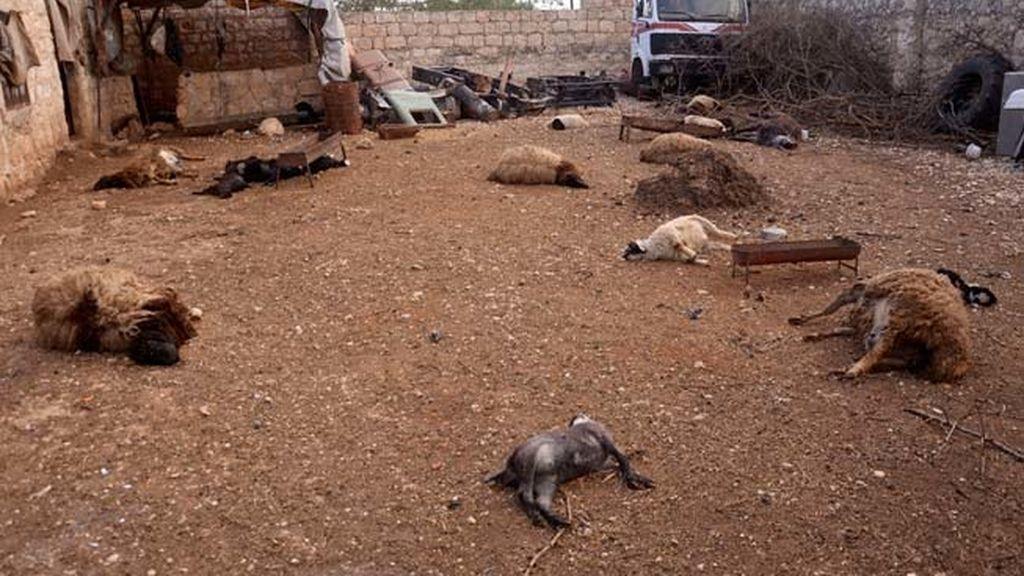 La oposición siria denuncia un ataque del Gobierno con armas químicas