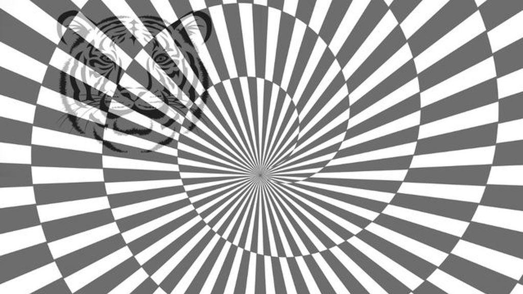 Unas imágenes de color con unas figuras escondidas