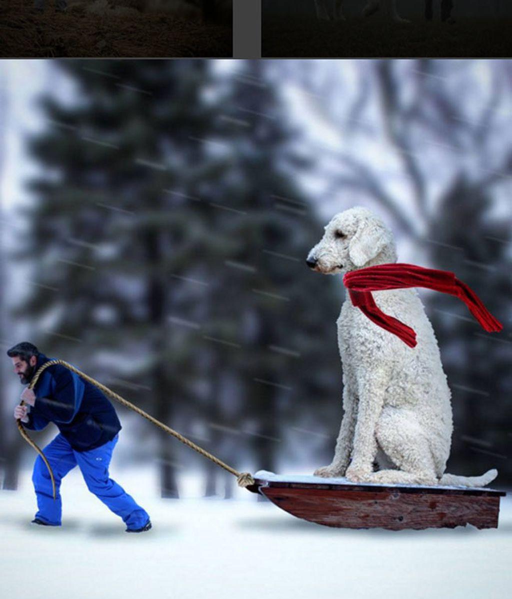 El fotógrafo venció la depresión con su mascota