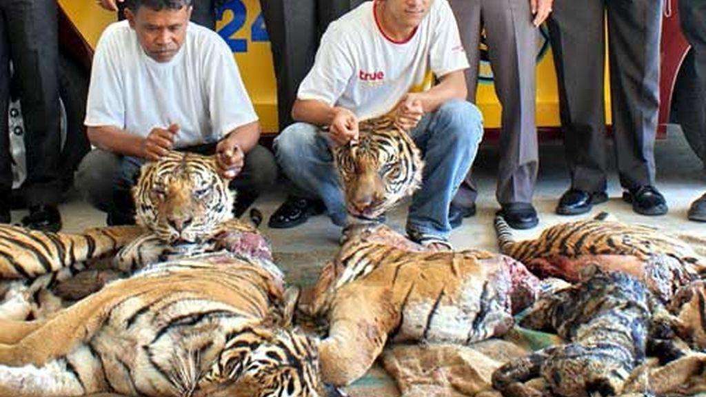Matanza en Tailandia