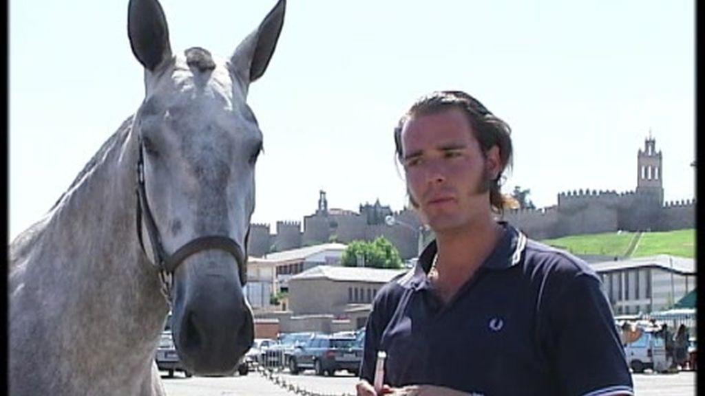 Ávila celebra la feria del caballo de pura raza española