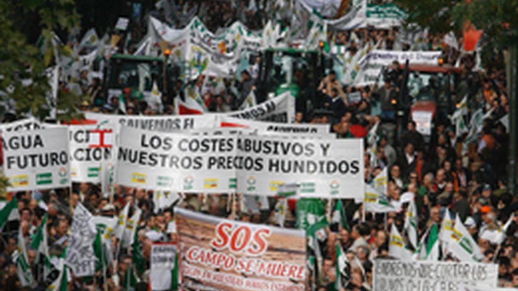Miles de agricultores piden en Mérida la dimisión de Zapatero y Espinosa ante la mayor crisis del sector
