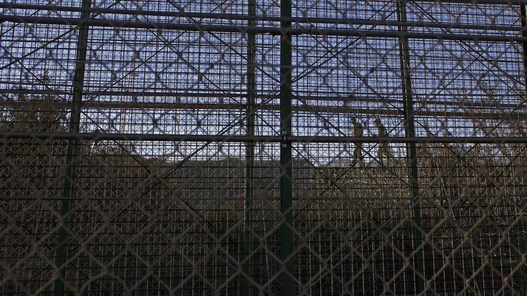 Imagen de archivo de la valla de Melilla