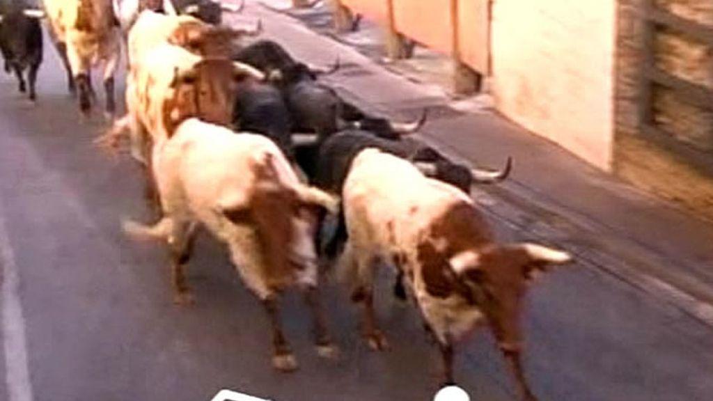 La manada a su paso por la cuesta de Santo Domingo