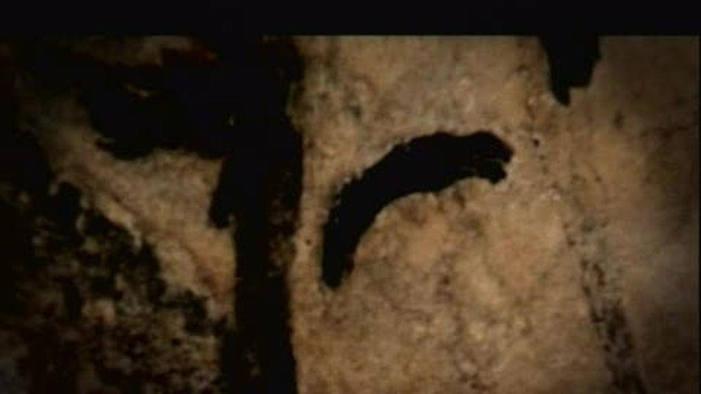 La última cueva sagrada: Grotte de Niaux