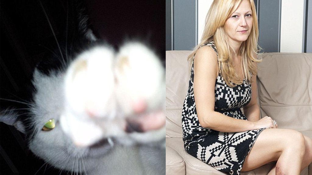 Vacunada tras el brutal zarpazo de su gato