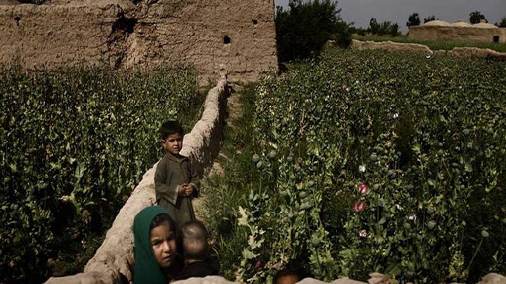 Unos niños en un campo de opio