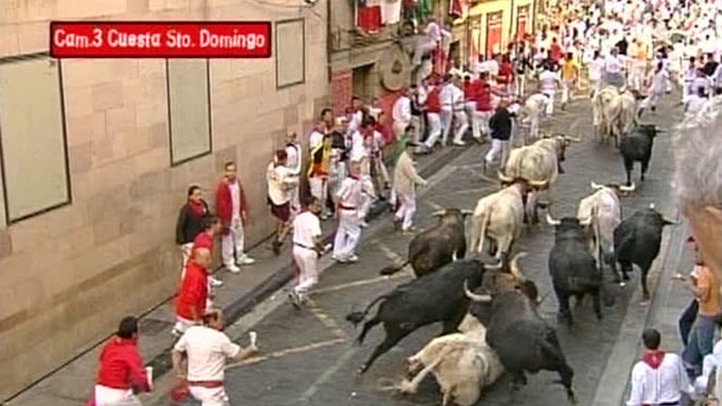 Los cabestros encabezaron desde la salida de los corrales de Santo Domingo a los seis toros