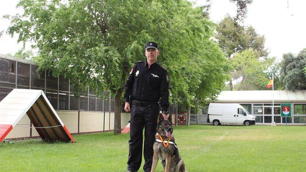 La perra 'Nena' recibe el premio al mejor can de 2014 de la Policía Nacional