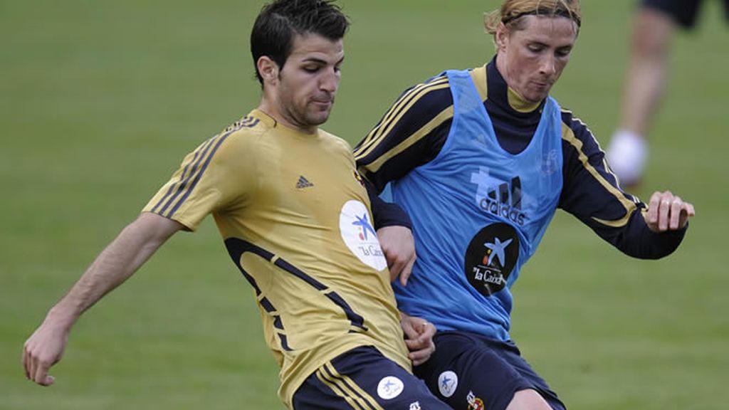 Torres y Cesc entran en la lista
