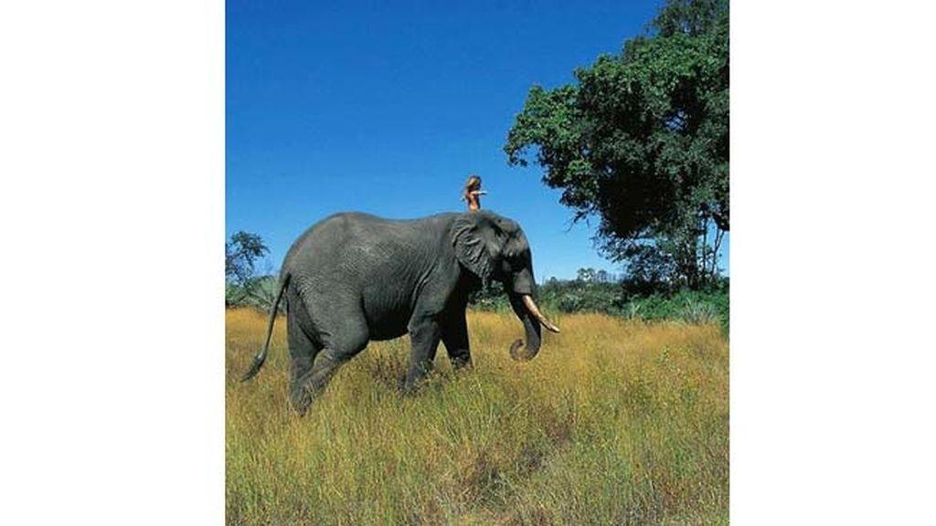La vida de una niña que se crio en la selva africana