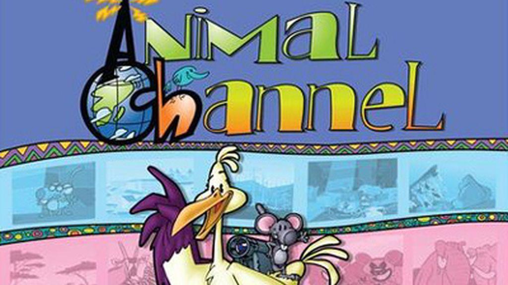 Animal Channel