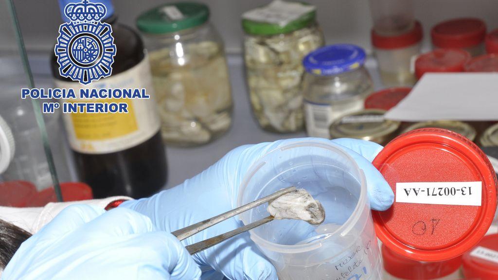 La Policía Científica ha identificado 25 cadáveres en condiciones extremas en 2013