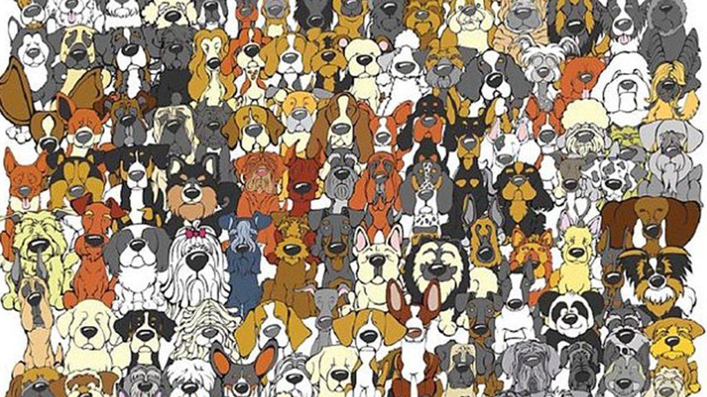 ¿Encuentras al panda entre todos estos perros?