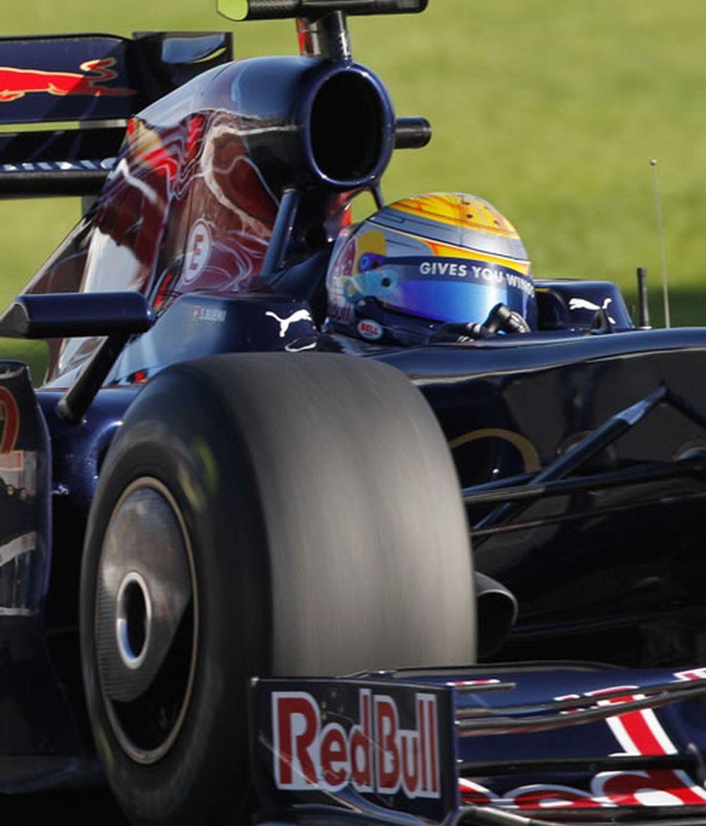 F1- Toro Rosso