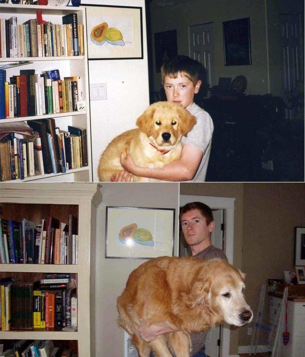 Dueños y mascotas... años después