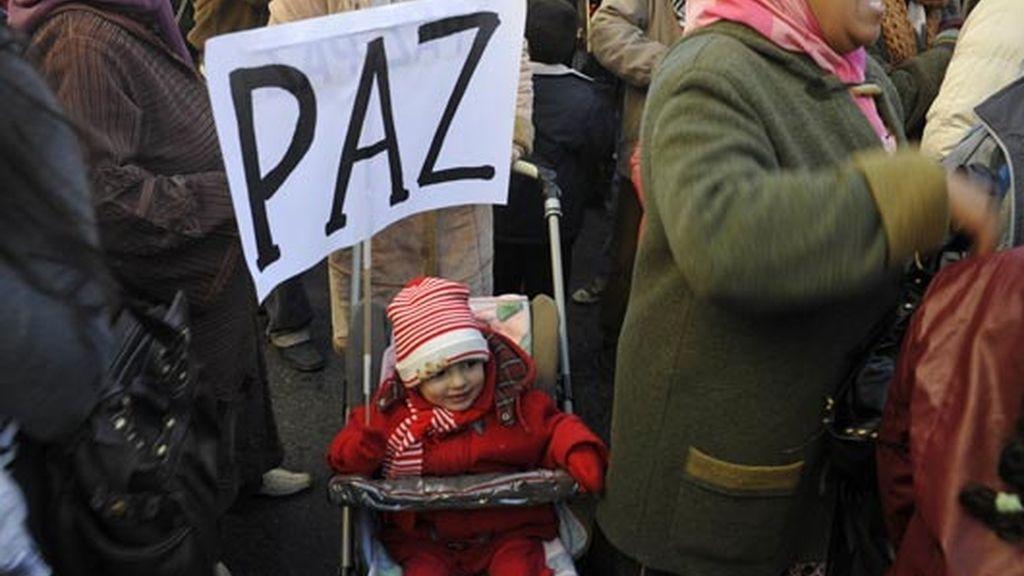 paz para gaza